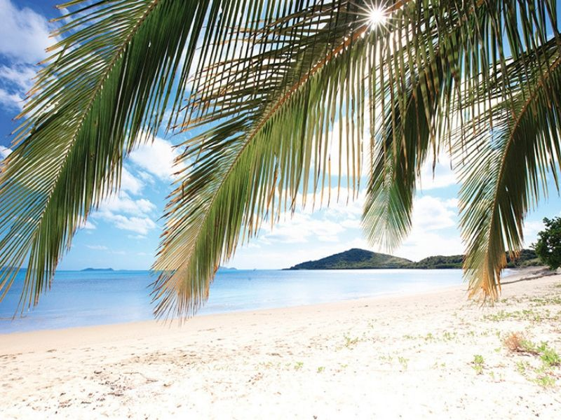Hydeaway Bay beach with white sand and palm trees